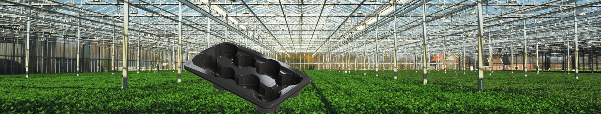Header-tuinbouw-plantentray-2000x380px